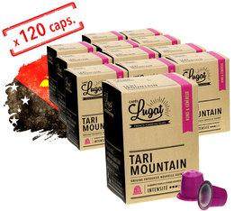 Pack Capsules Cafés Lugat Tari Mountain x120