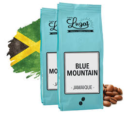 Café en grains : Blue Mountain - Jamaïque - 250g - Cafés Lugat