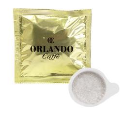 50 dosettes ESE Blue Mountain Oro - Orlando Caffè