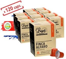 Pack Capsules Cafés Lugat Finca Alfaro x120