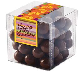 Bonbons de chocolat au lait aux noisettes 135g - Schaal Chocolatier