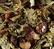 Tisane Fruits du Verger - 100g - Dammann