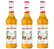 Lot de 3 Sirops Monin - Passion - 70cl