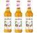 Lot de 3 Sirops Monin - Passion - 70cl